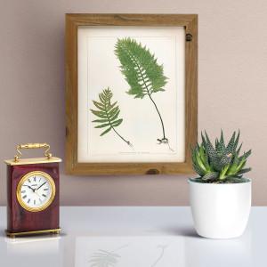 Botanica-Rustica-mockup